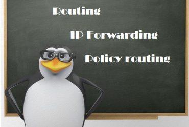 routing_ip_forwarding