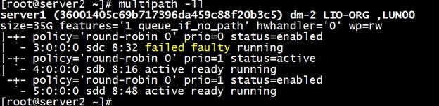 multipath-ll server2-faulty